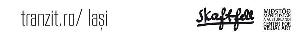 logo_tranzit_skaftfell